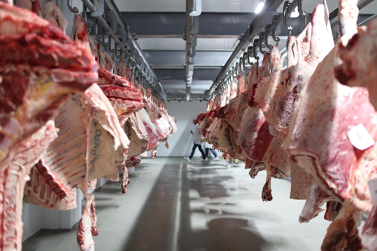Оборудование для мясной промышленности