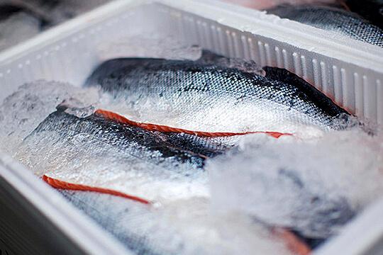 Оборудование для рыбы и морепродуктов