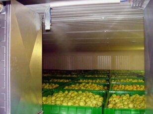 Холодильные камеры для хранения яблок